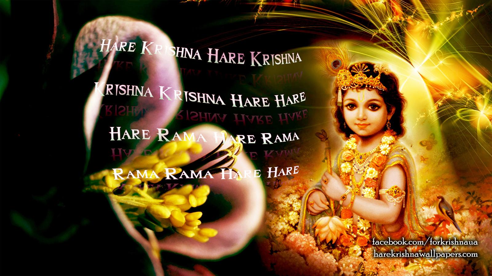 Krishna Wallpaper (011) Size 1600x900 Download