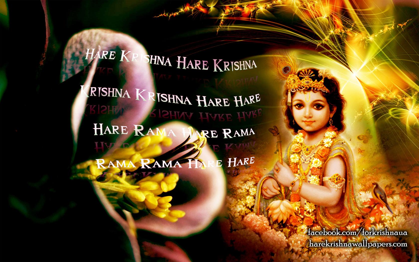 Krishna Wallpaper (011) Size 1680x1050 Download