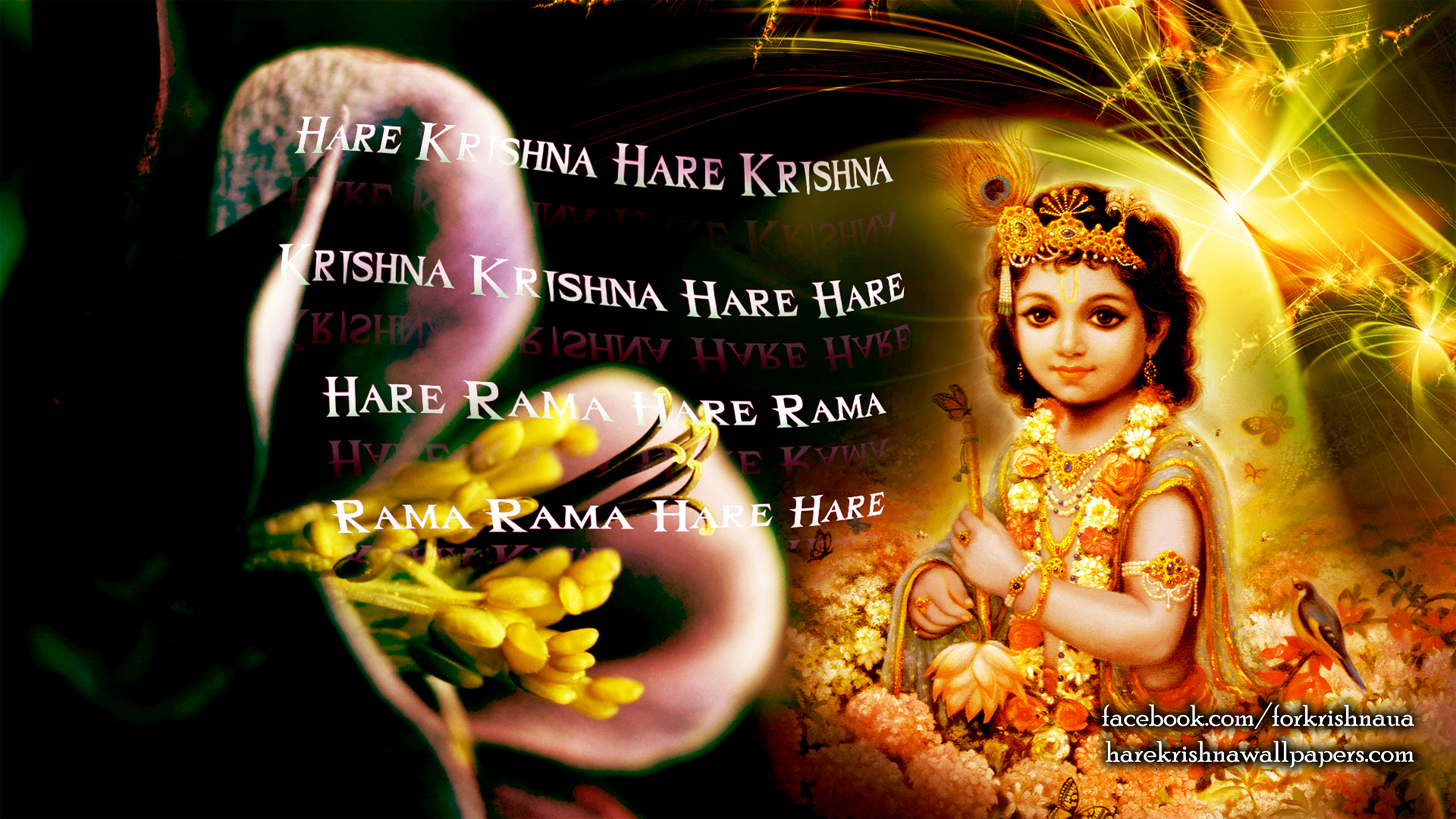 Krishna Wallpaper (011) Size 1920x1080 Download