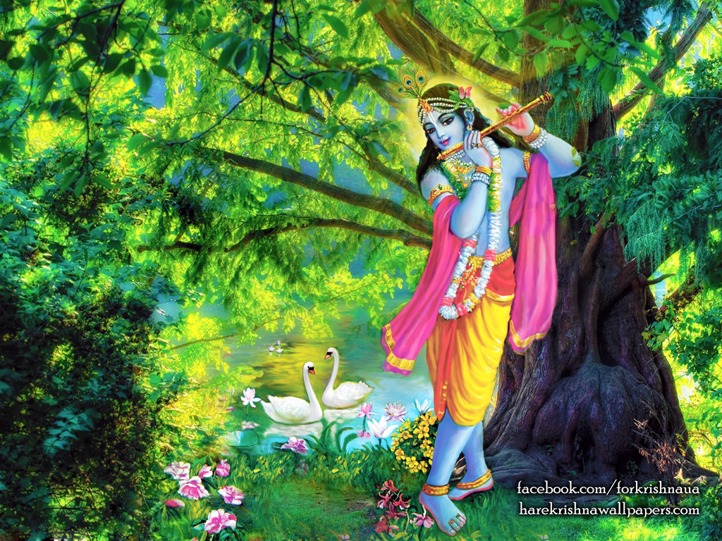 Krishna Wallpaper (012) Size 1024x768 Download