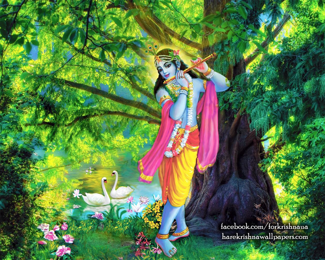 Krishna Wallpaper (012) Size 1280x1024 Download