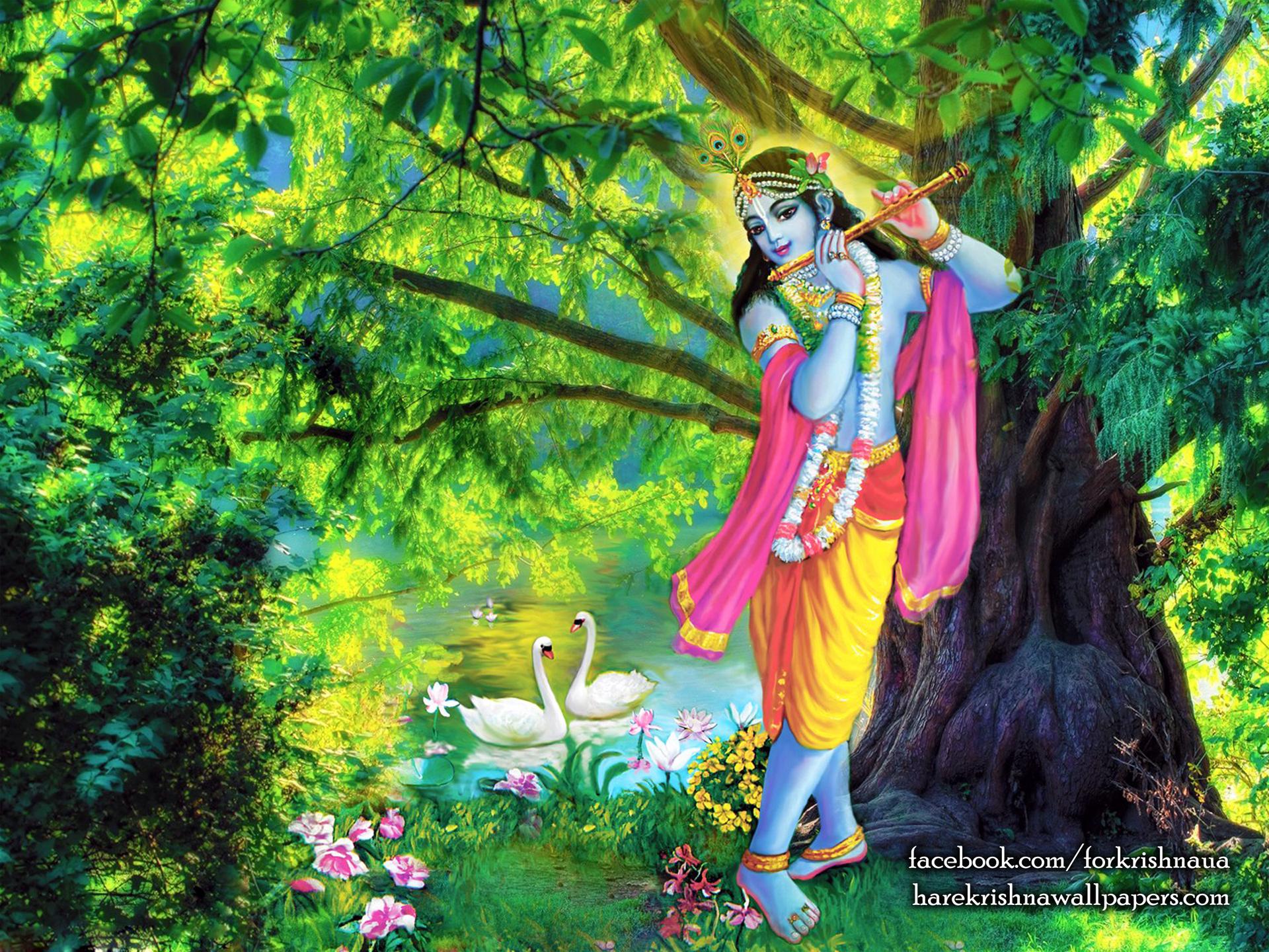 Krishna Wallpaper (012) Size 1920x1440 Download