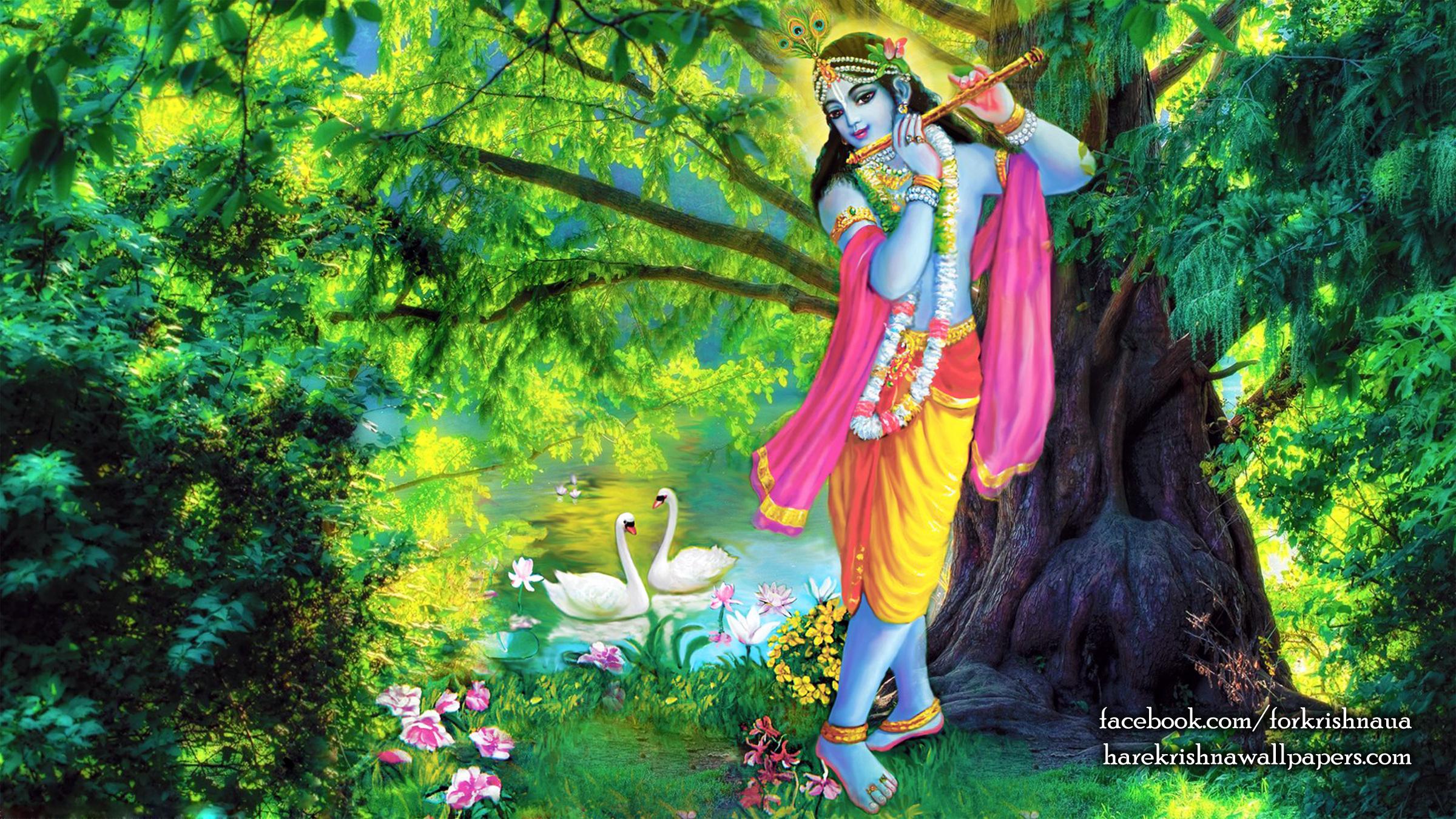 Krishna Wallpaper (012) Size 2400x1350 Download