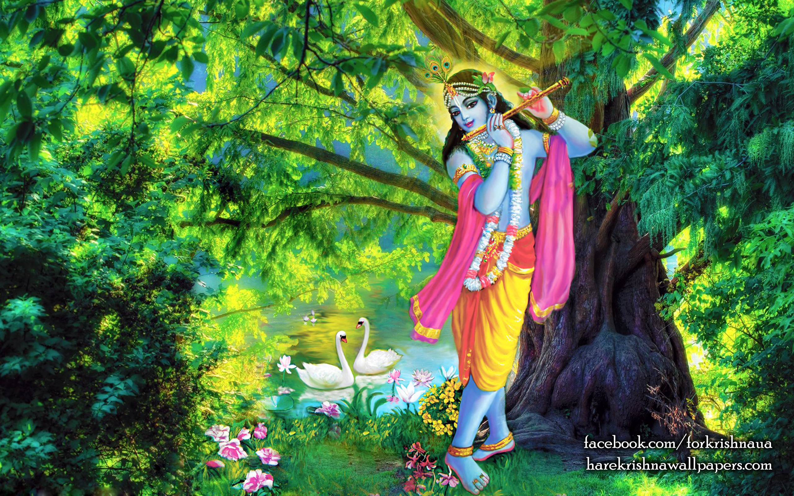 Krishna Wallpaper (012) Size 2560x1600 Download