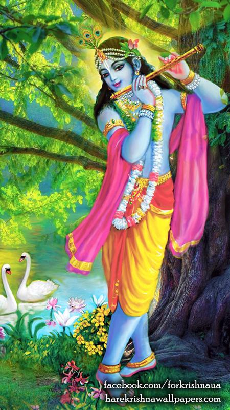 Krishna Wallpaper (012) Size 450x800 Download