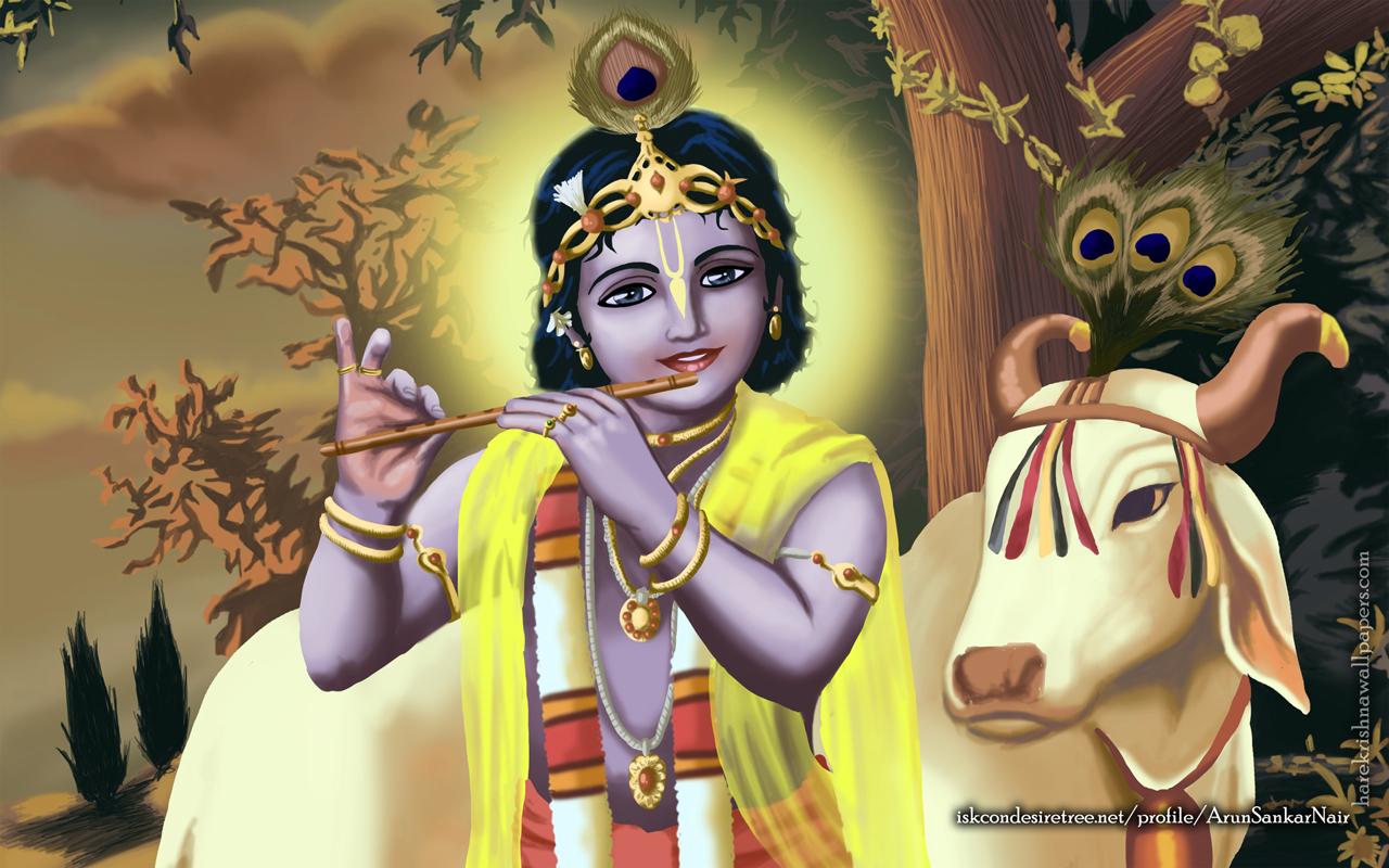 Krishna Wallpaper (019) Size 1280x800 Download