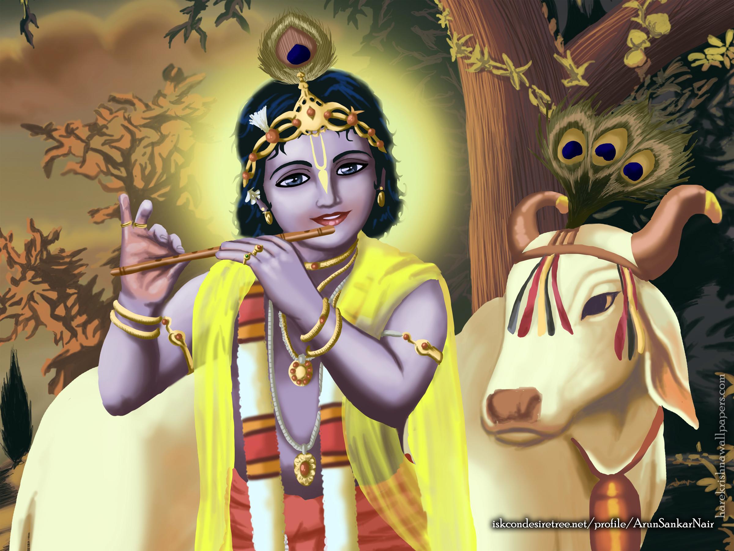 Krishna Wallpaper (019) Size 2400x1800 Download