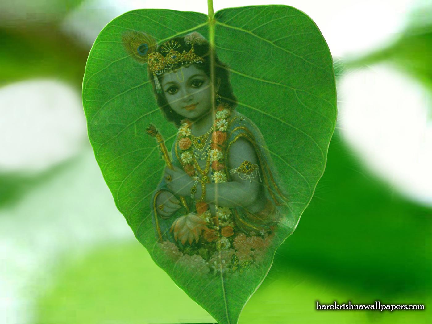 Krishna Wallpaper (038) Size 1400x1050 Download