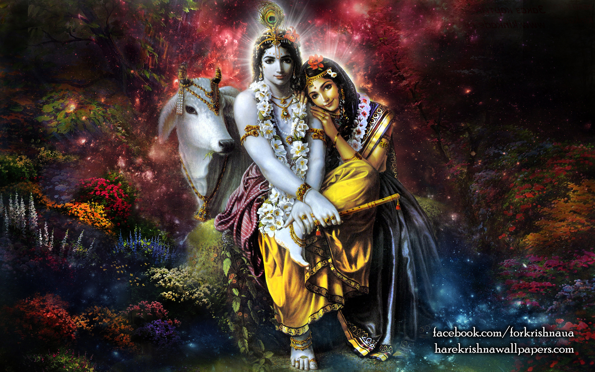 Radha Krishna Wallpaper (003) Size 1920x1200 Download