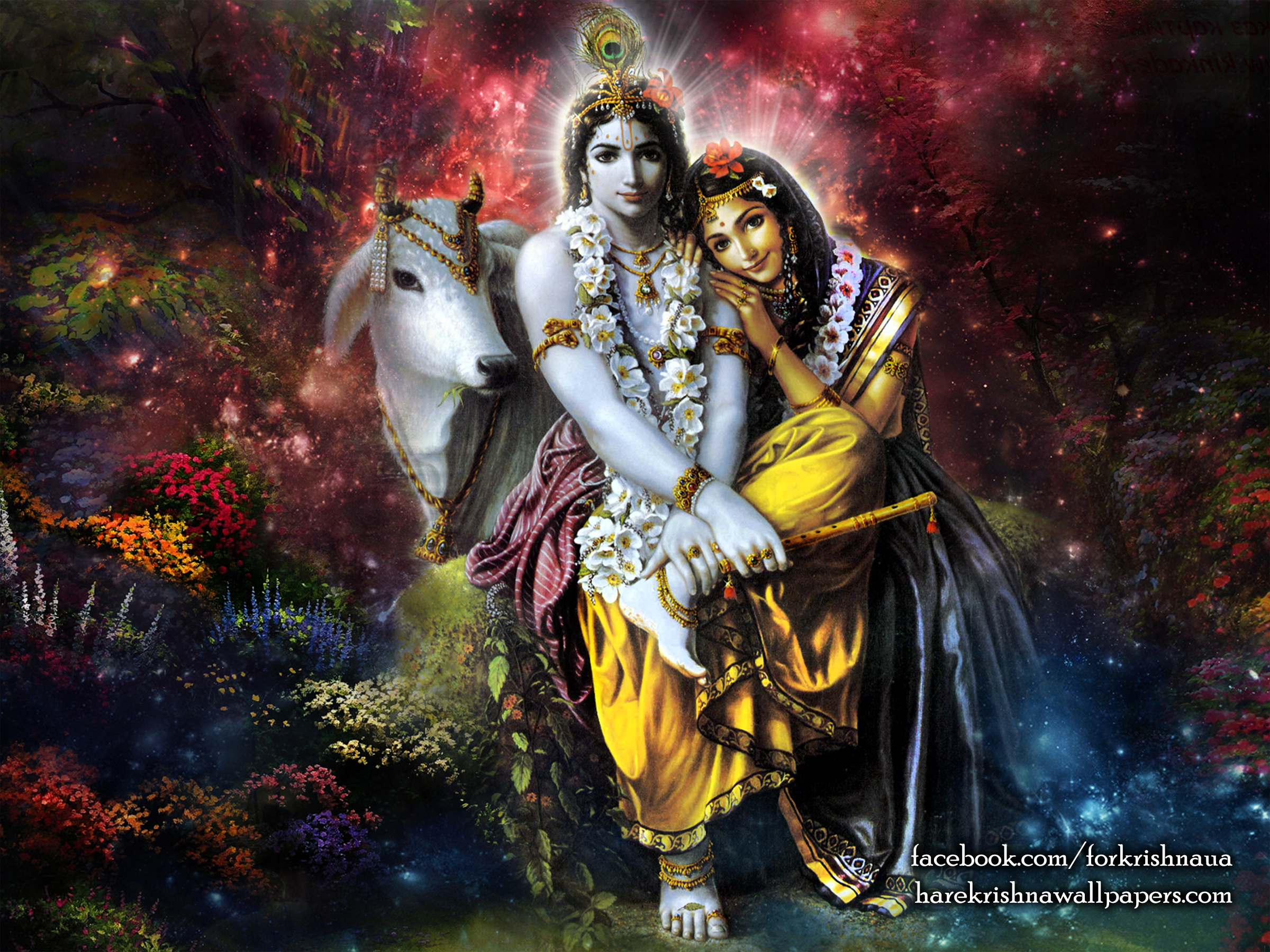 Radha Krishna Wallpaper (003) Size 2400x1800 Download