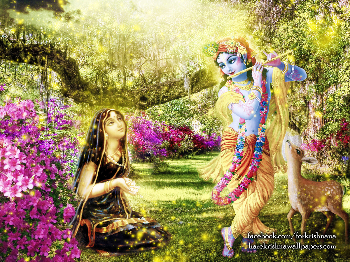 Radha Krishna Wallpaper (011) Size1200x900 Download