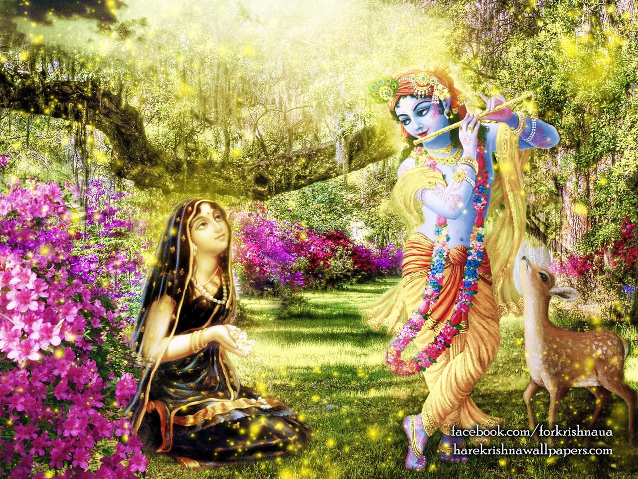 Radha Krishna Wallpaper (011) Size 1280x960 Download
