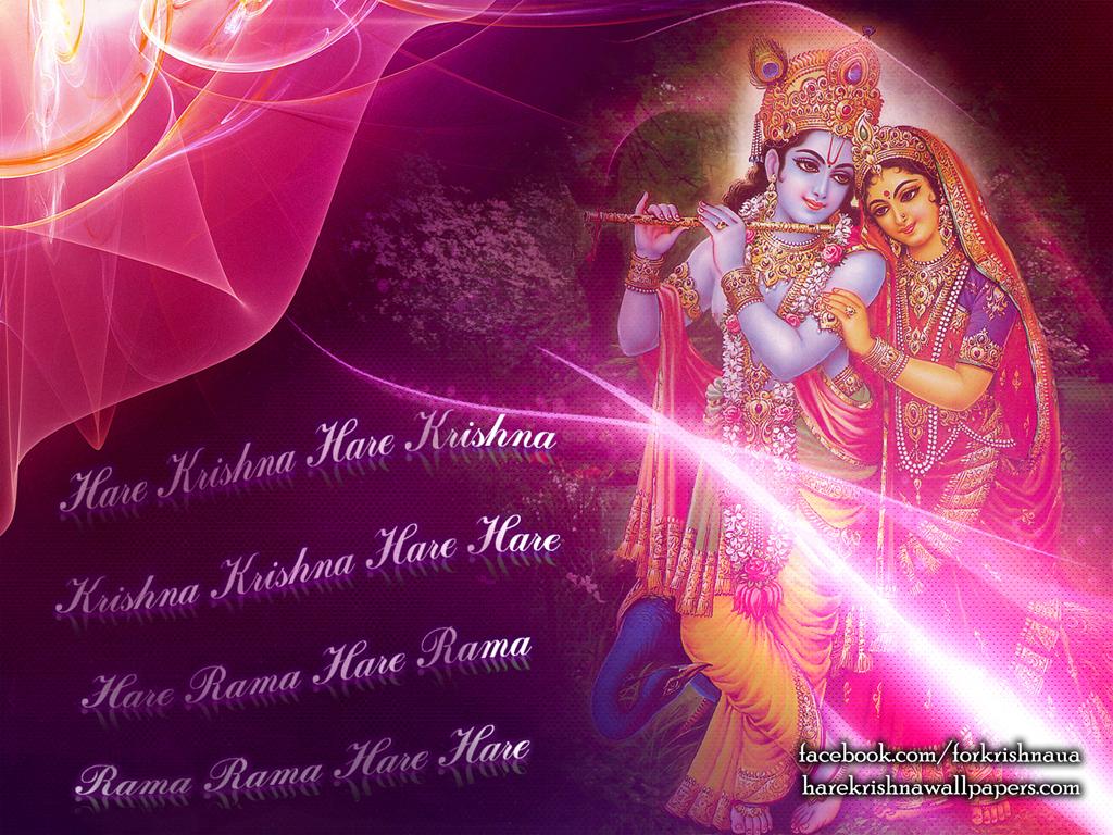 Radha Krishna Wallpaper (013) Size 1024x768 Download