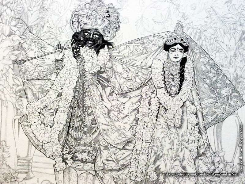 Radha Krishna Wallpaper (024)