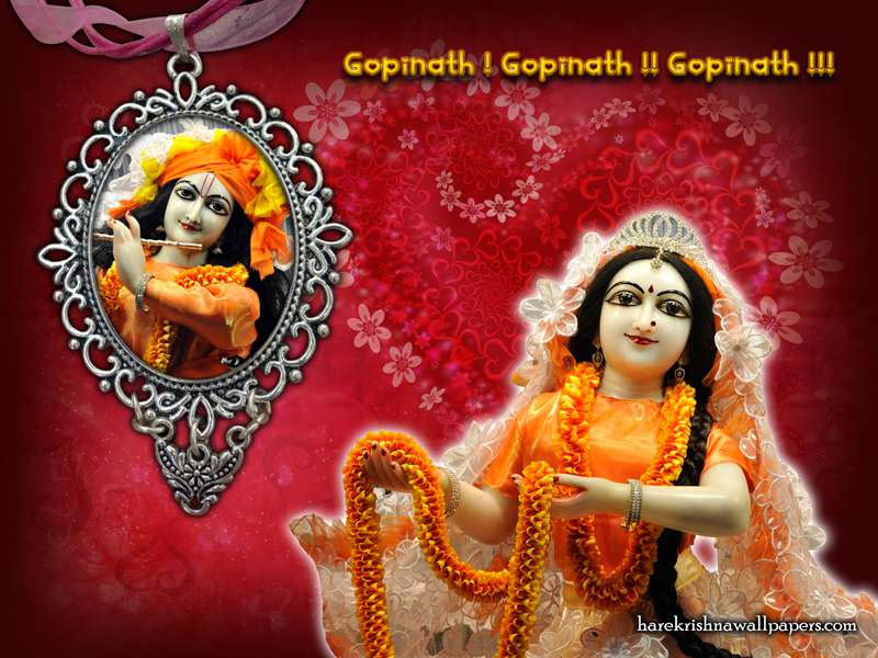 Sri Sri Radha Gopinath Wallpaper (001)
