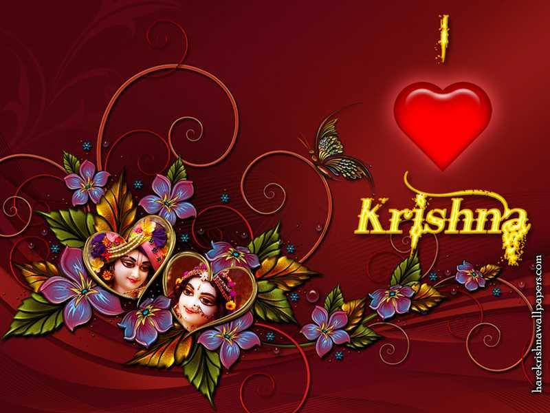 Valentine Day Wallpaper, Free Download Valentine Wallpaper
