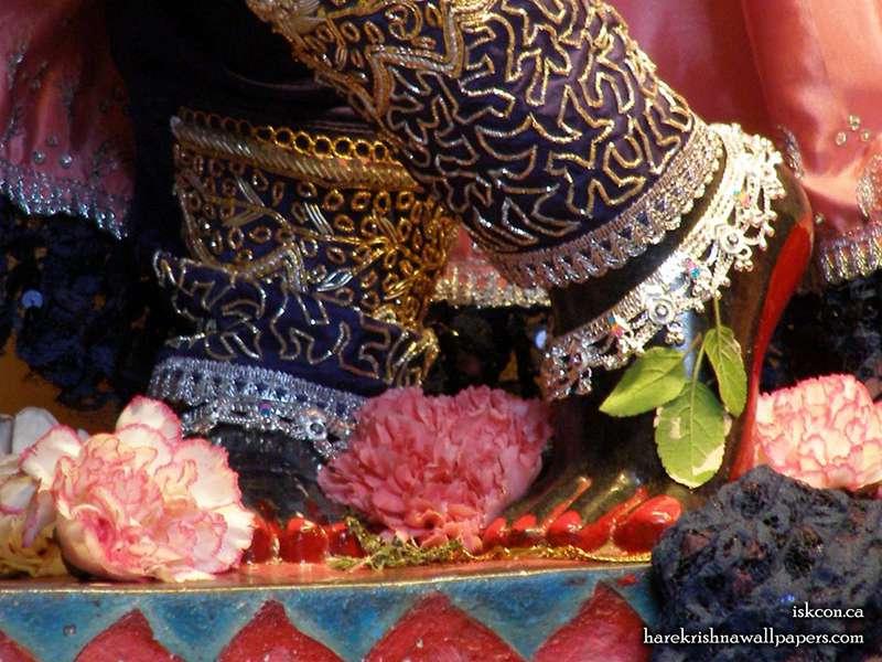 Sri Khirachora Gopinath Feet Wallpaper (003)