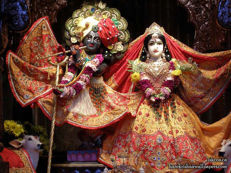 Sri Sri Radha Khirachora Gopinath Wallpaper (008)