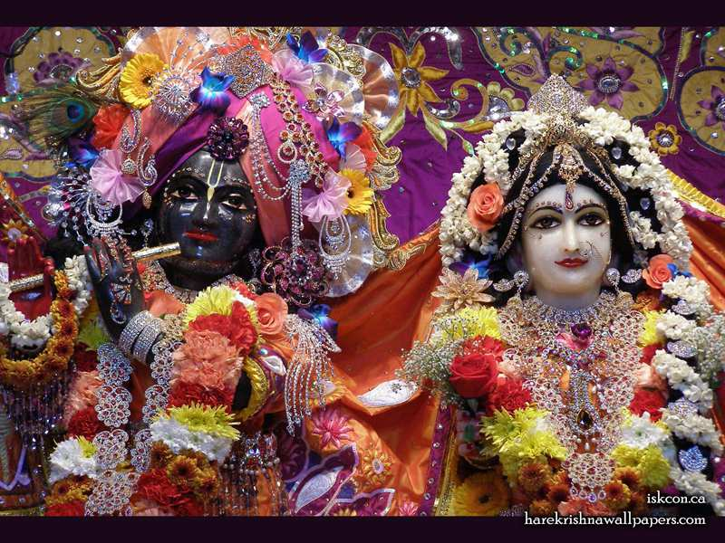 Sri Sri Radha Khirachora Gopinath Close up Wallpaper (010)