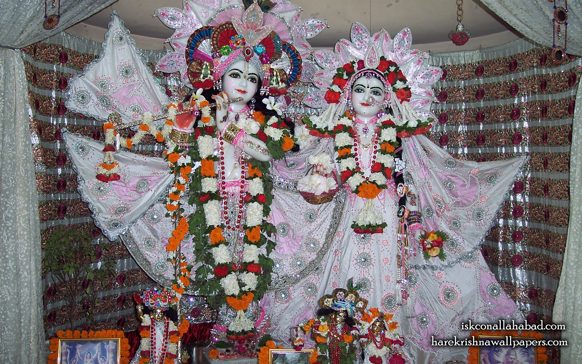 Sri Sri Radha Venimadhava Wallpaper (002) Size 1920x1200 Download