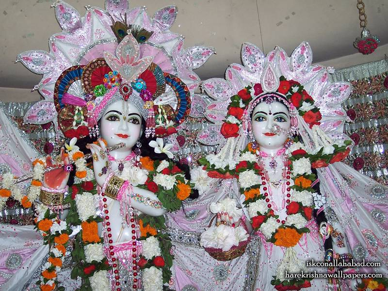 Sri Sri Radha Venimadhava Close up Wallpaper,