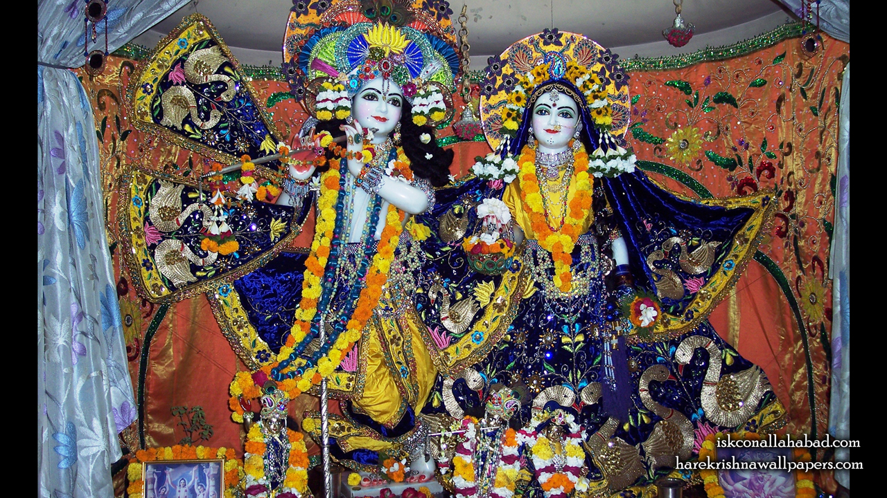 Sri Sri Radha Venimadhava Wallpaper (003) Size1280x720 Download