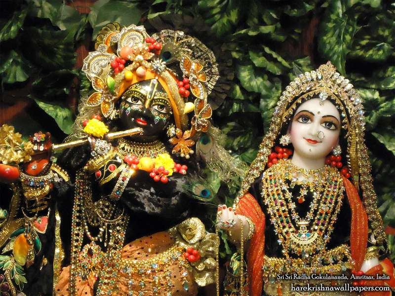 Sri Sri Radha Gokulananda Close up Wallpaper (004)