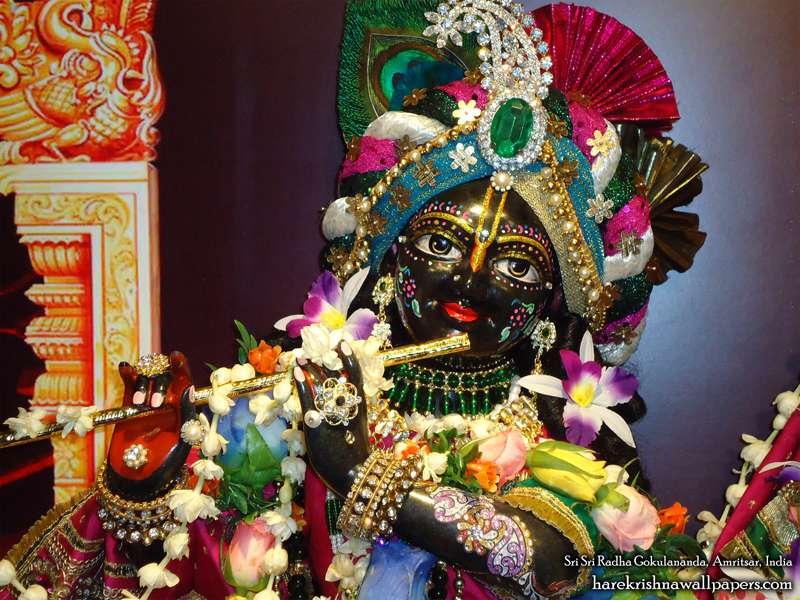 Sri Gokulananda Close up Wallpaper (005)