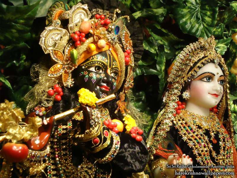 Sri Sri Radha Gokulananda Close up Wallpaper (005)
