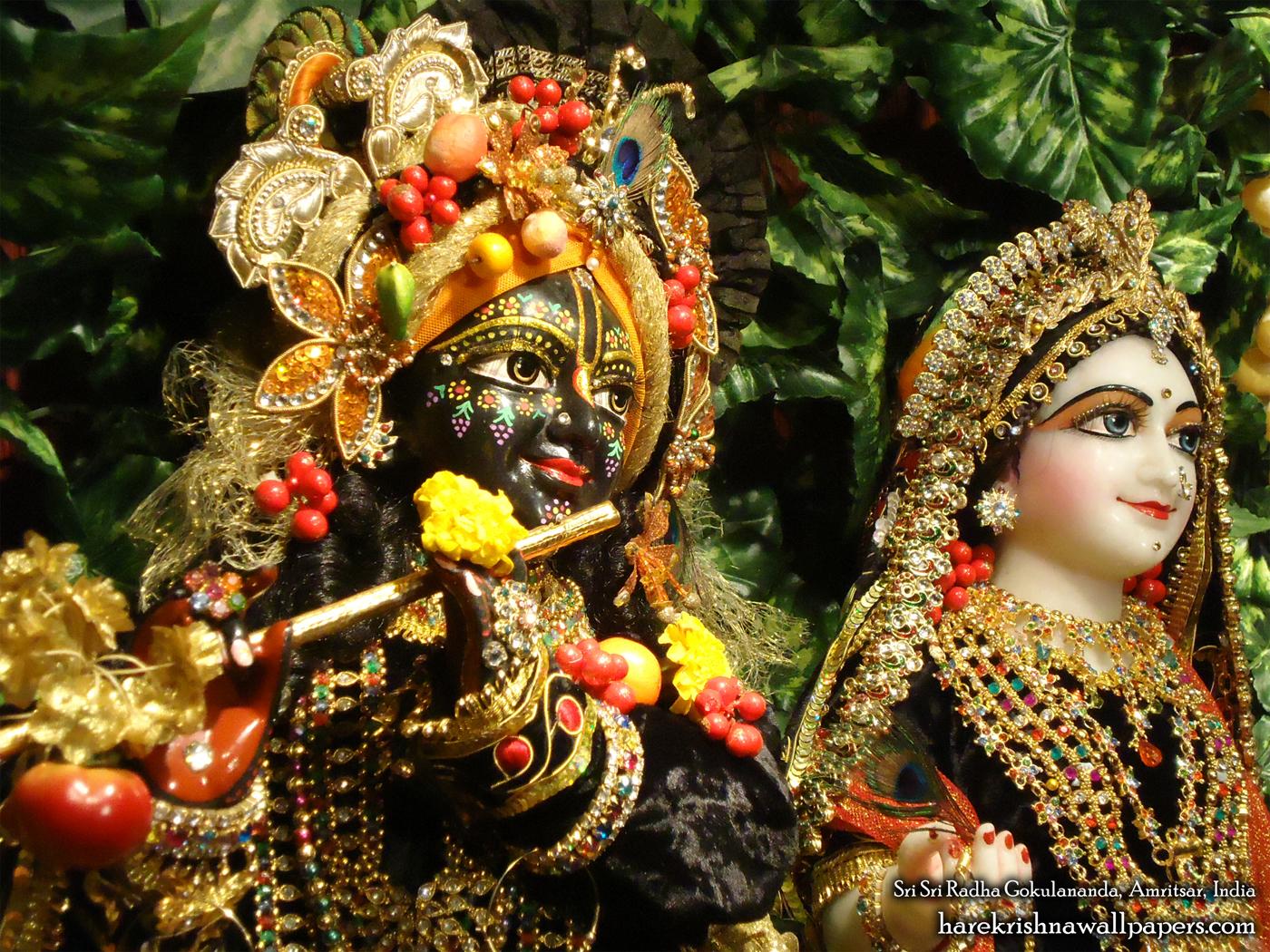 Sri Sri Radha Gokulananda Close up Wallpaper (005) Size 1400x1050 Download
