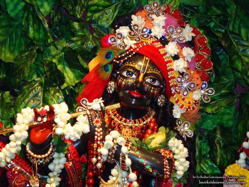 Sri Gokulananda Close up Wallpaper (006)