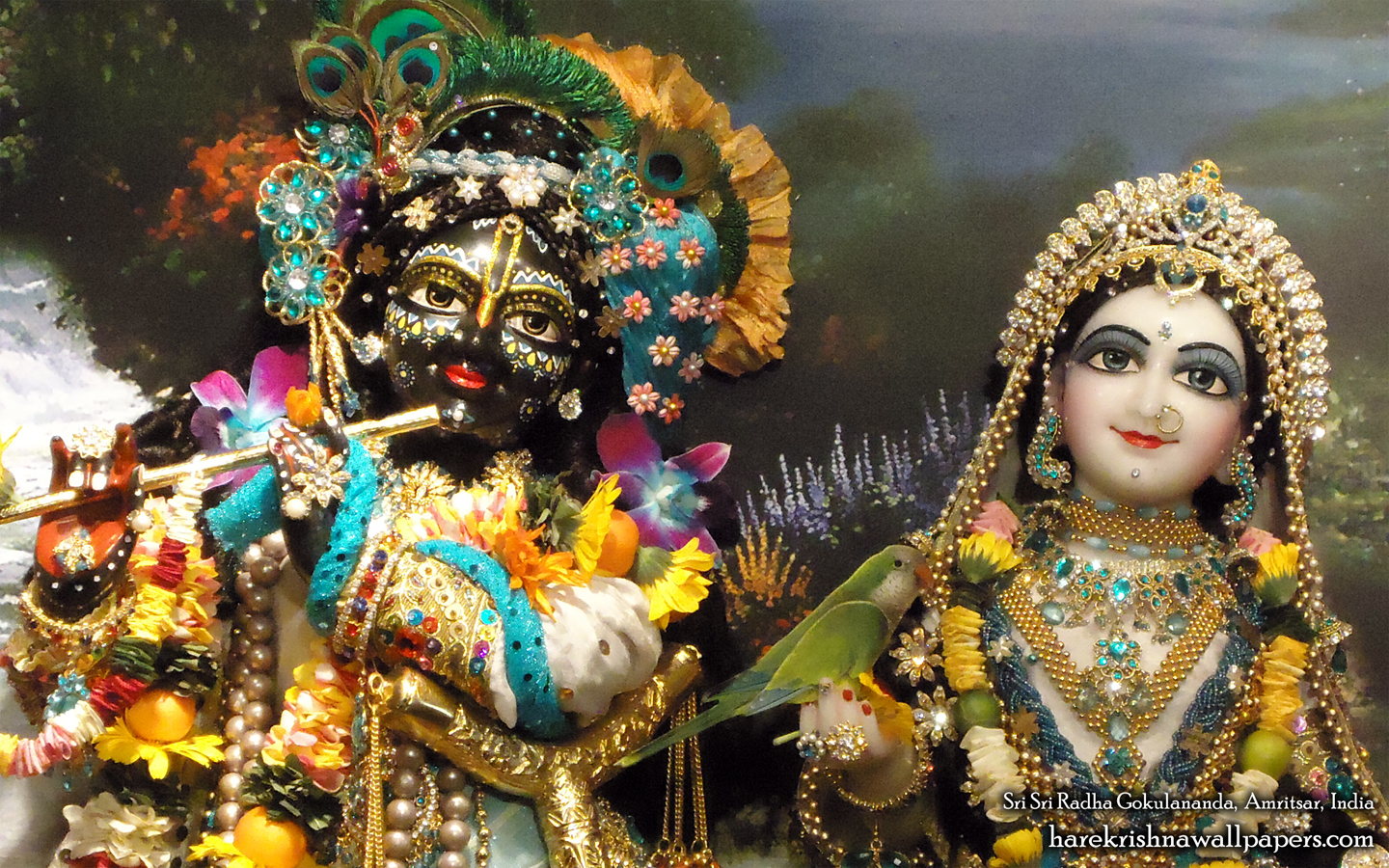 Sri Sri Radha Gokulananda Close up Wallpaper (007) Size 1440x900 Download