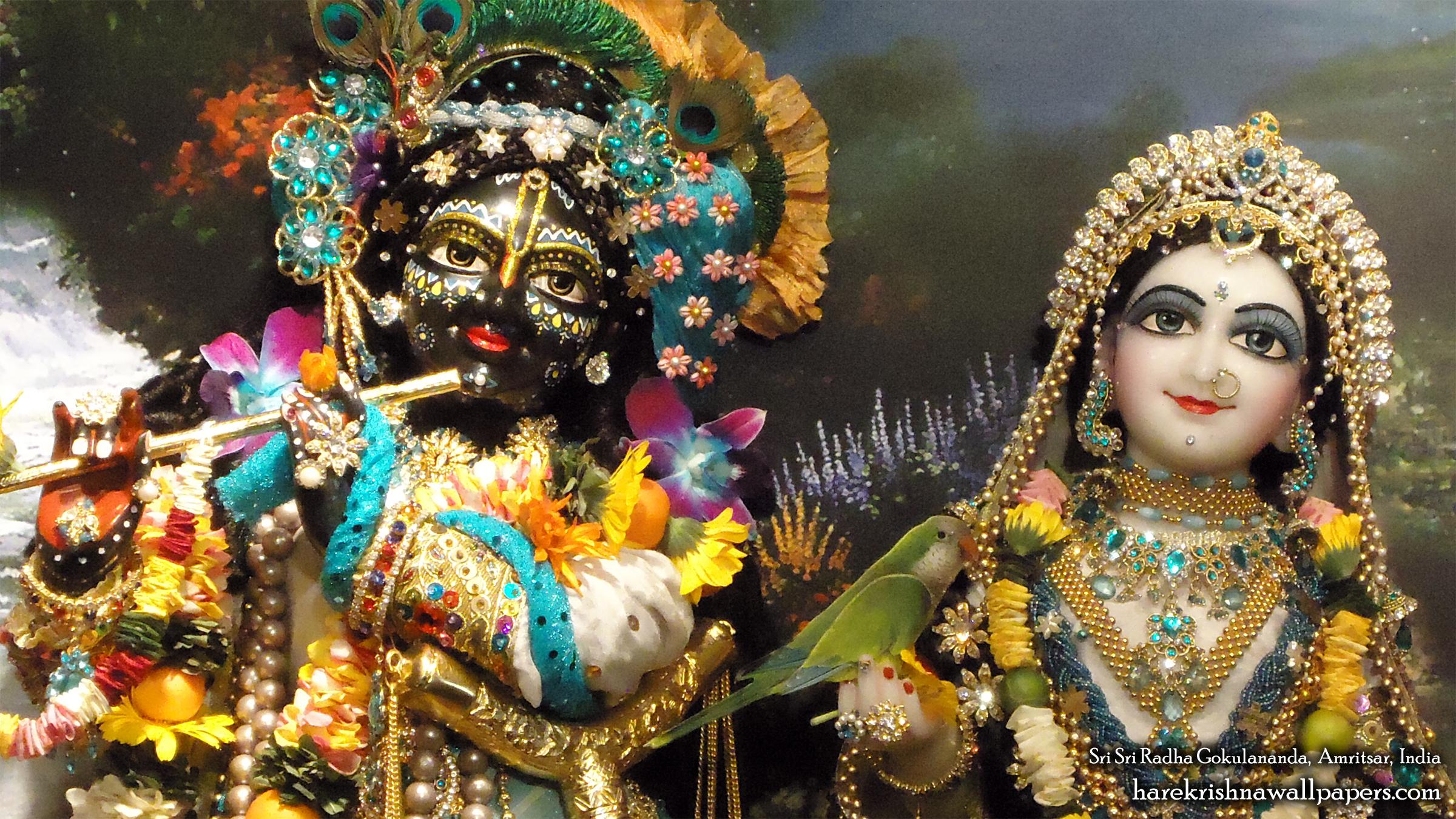 Sri Sri Radha Gokulananda Close up Wallpaper (007) Size 2400x1350 Download