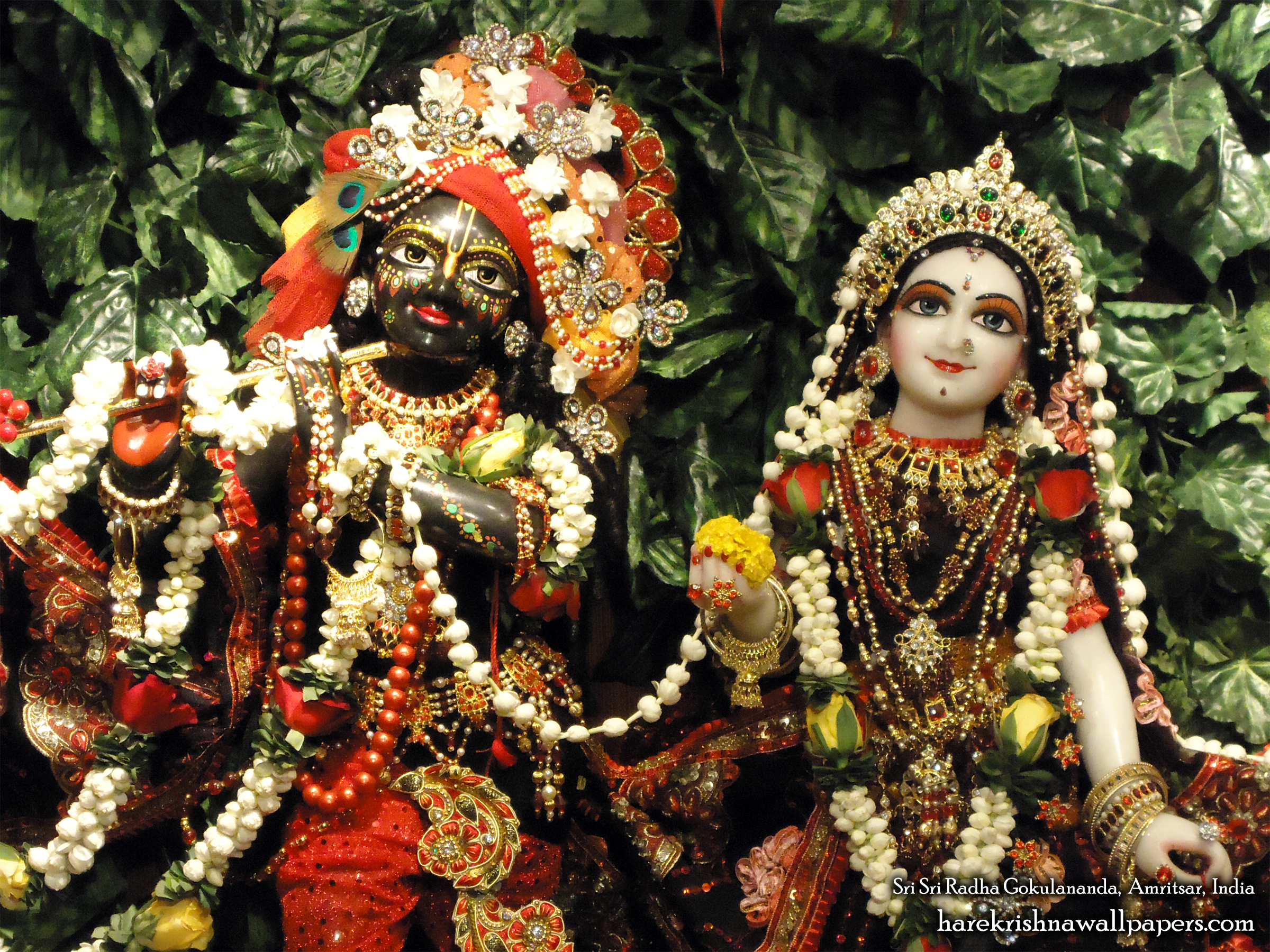 Sri Sri Radha Gokulananda Close up Wallpaper (009) Size 2400x1800 Download