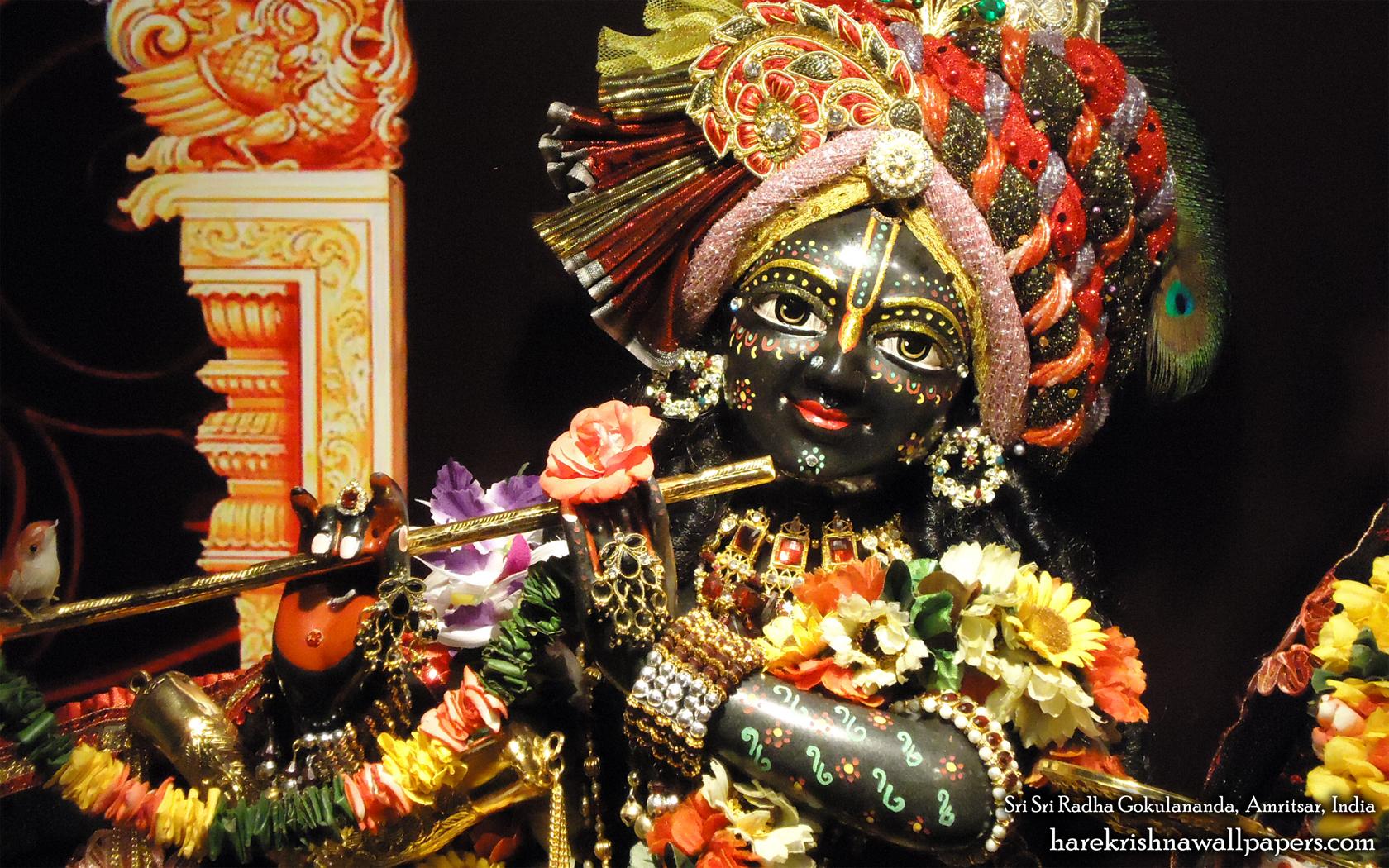 Sri Gokulananda Close up Wallpaper (011) Size 1680x1050 Download