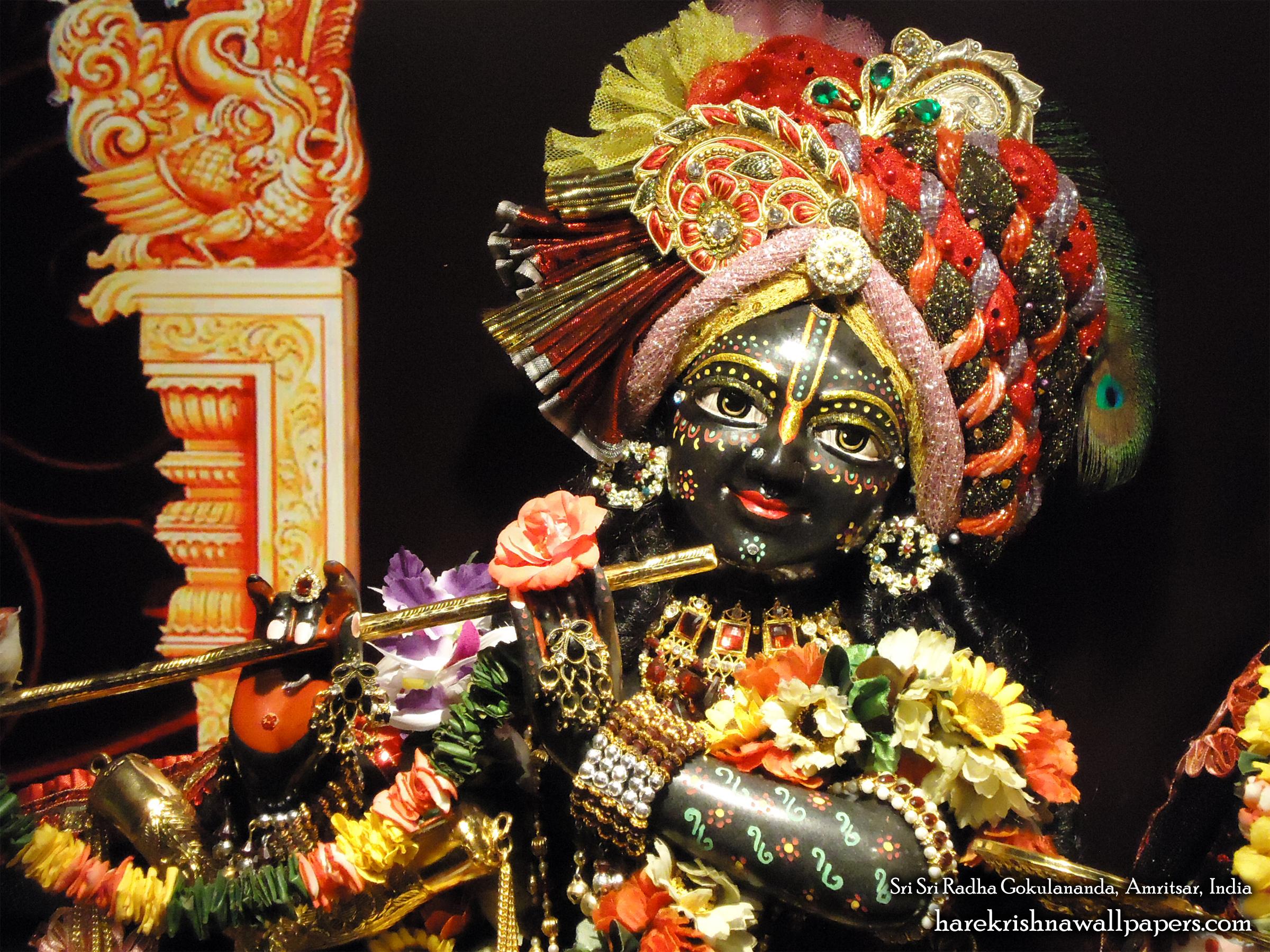 Sri Gokulananda Close up Wallpaper (011) Size 2400x1800 Download
