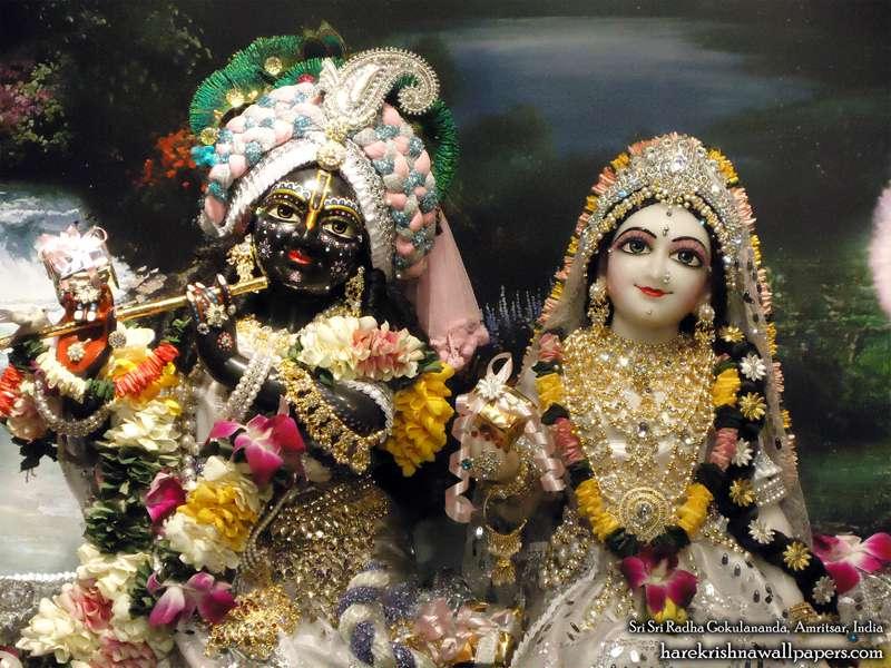 Sri Sri Radha Gokulananda Close up Wallpaper (011)