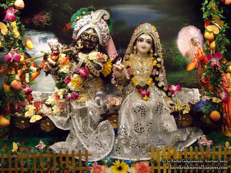 Sri Sri Radha Gokulananda Wallpaper (012) Size 800x600 Download