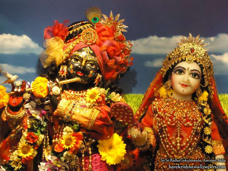 Sri Sri Radha Gokulananda Close up Wallpaper (012)