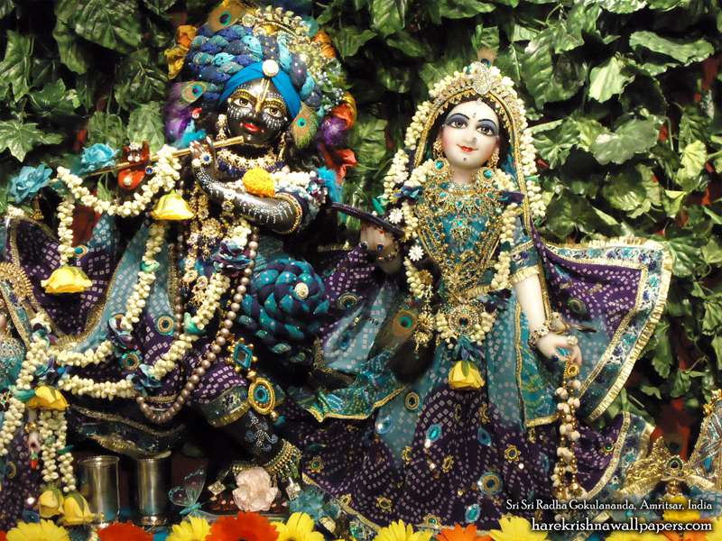 Sri Radha Close up Wallpaper (013)
