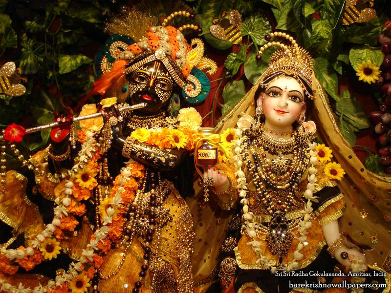 Sri Sri Radha Gokulananda Close up Wallpaper (014)