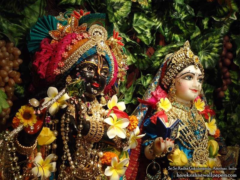 Sri Sri Radha Gokulananda Close up Wallpaper (016)