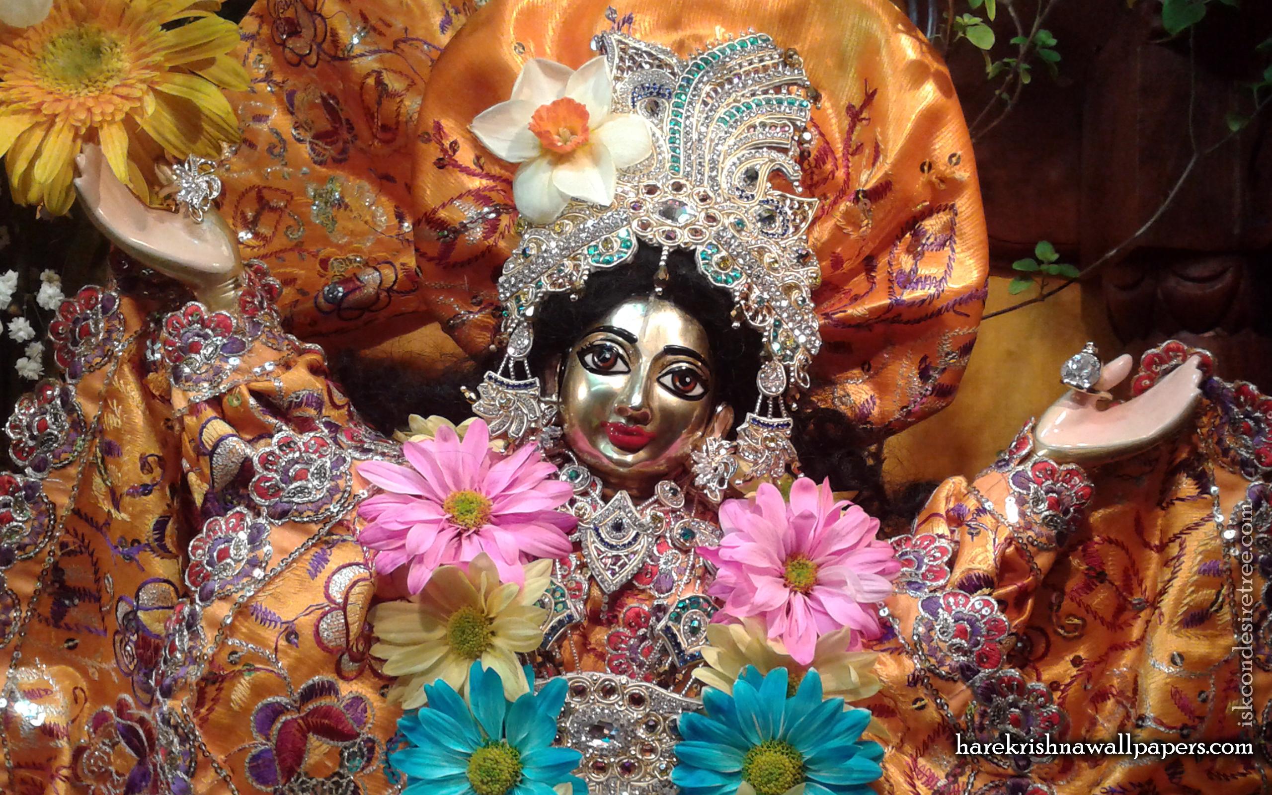 Sri Gaura Close up Wallpaper (001) Size 2560x1600 Download