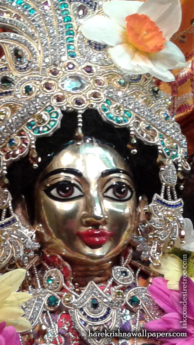 Sri Nitai Close up Wallpaper (001) Size 675x1200 Download