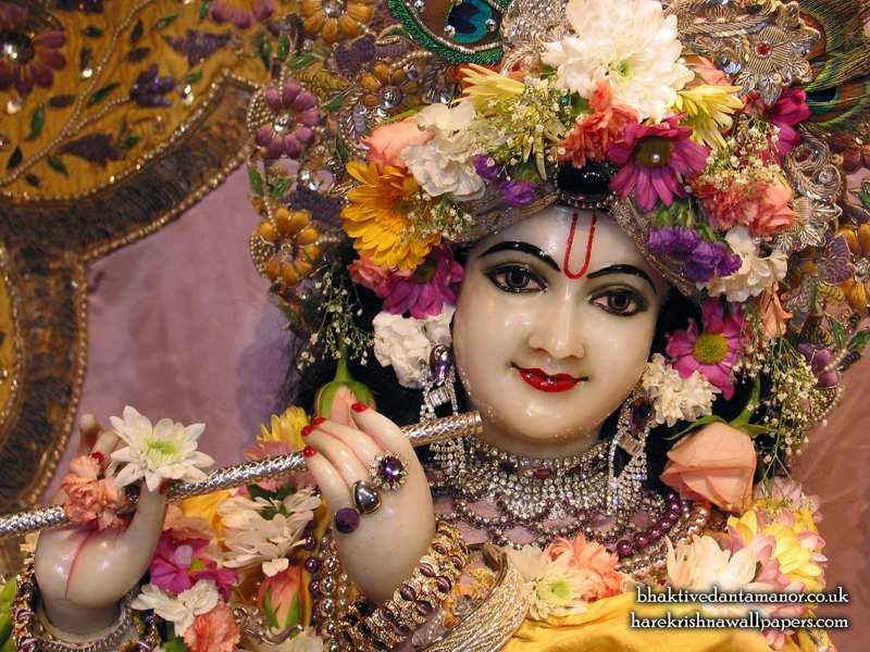 Sri Gokulananda Close up Wallpaper (002)