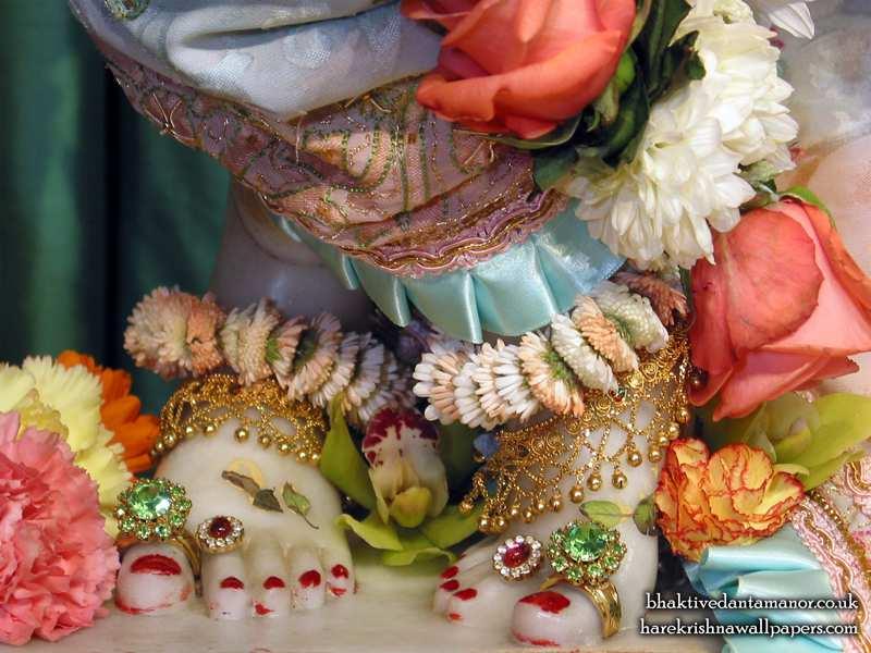 Sri Gokulananda Feet Wallpaper (003)