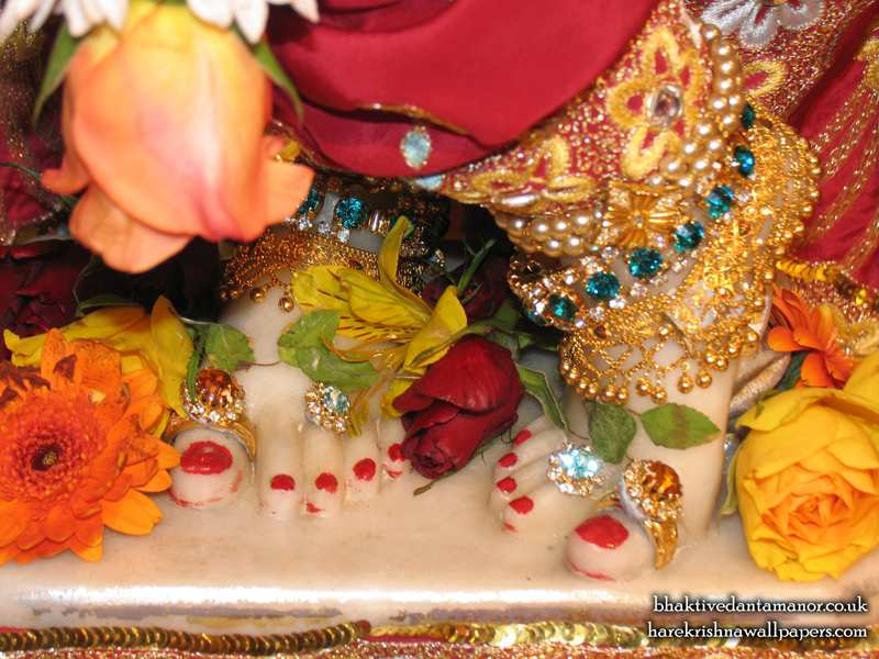 Sri Gokulananda Feet Wallpaper (006)