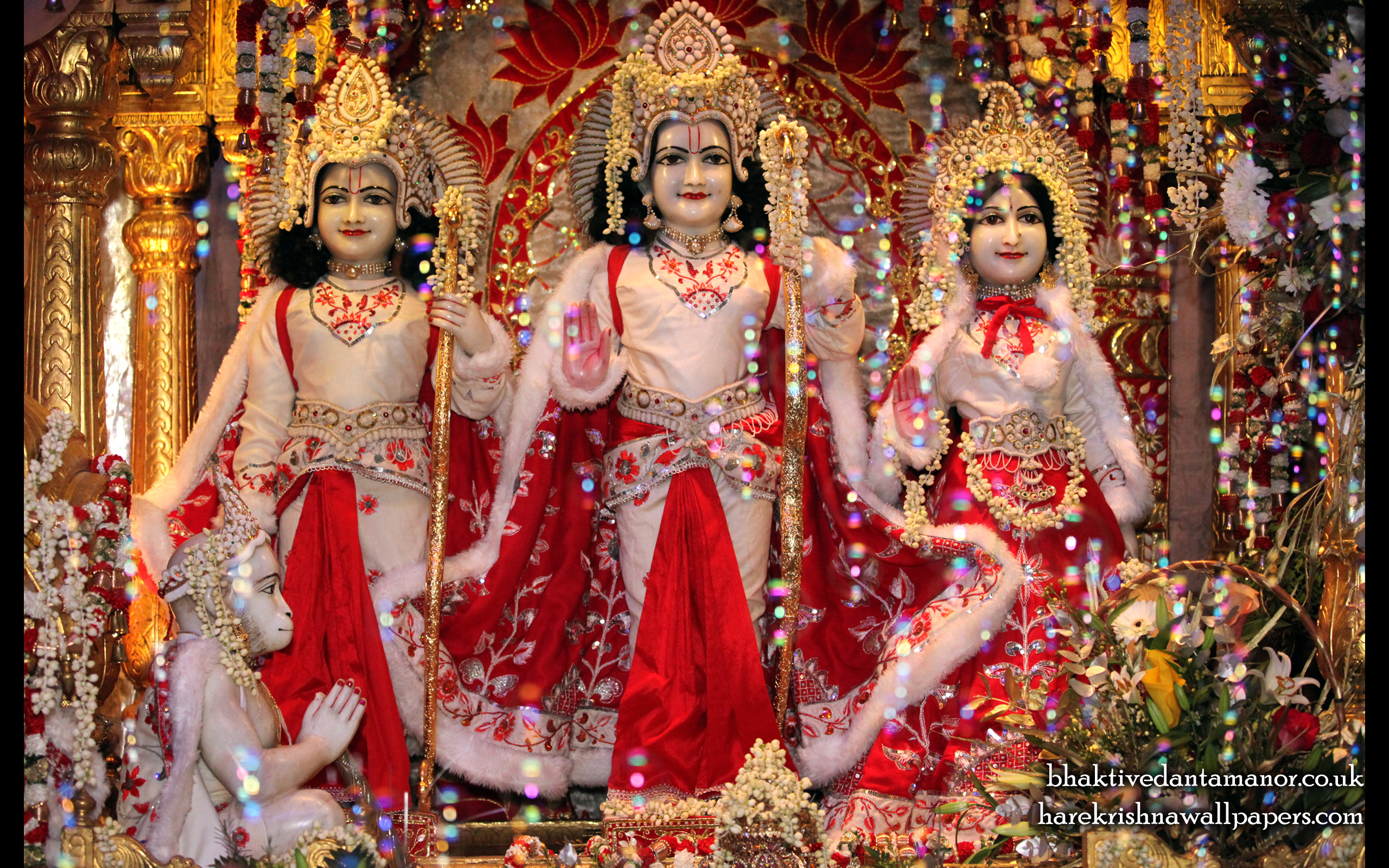 Sri Sri Sita Rama Laxman Hanuman Wallpaper (010) Size 2560x1600 Download