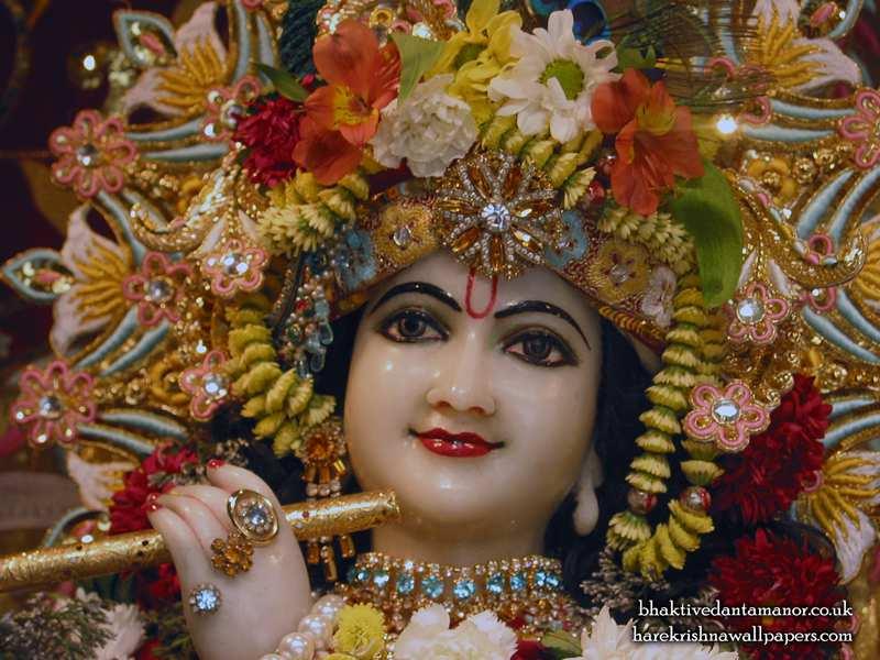 Sri Gokulananda Close up Wallpaper (013)