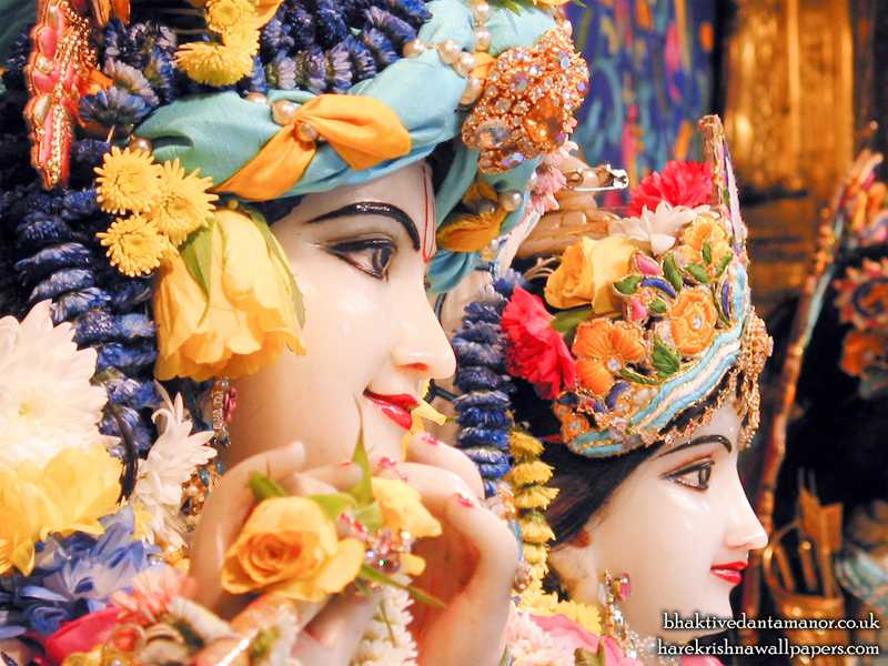 Sri Sri Radha Gokulanand Close up Wallpaper (014)